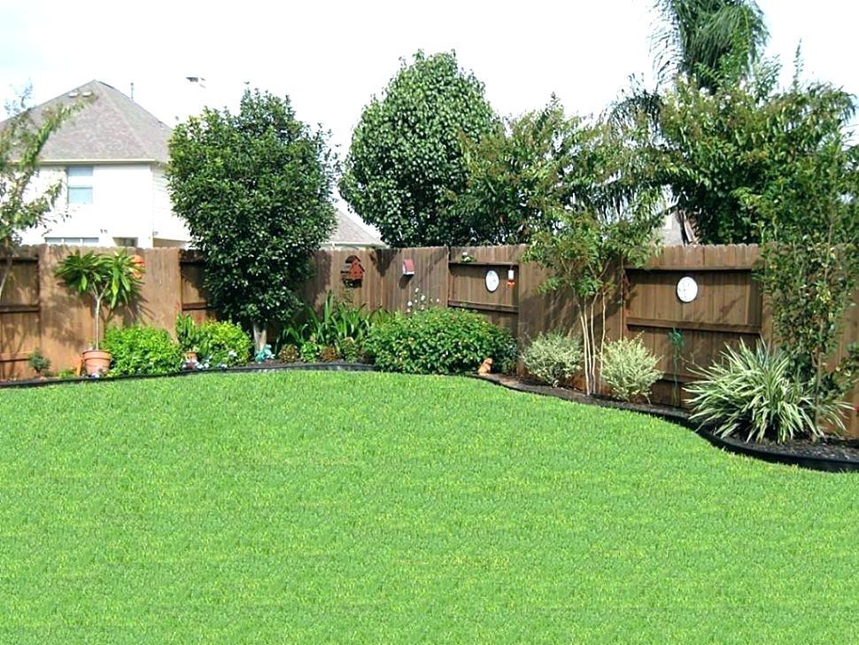 Backyard_size