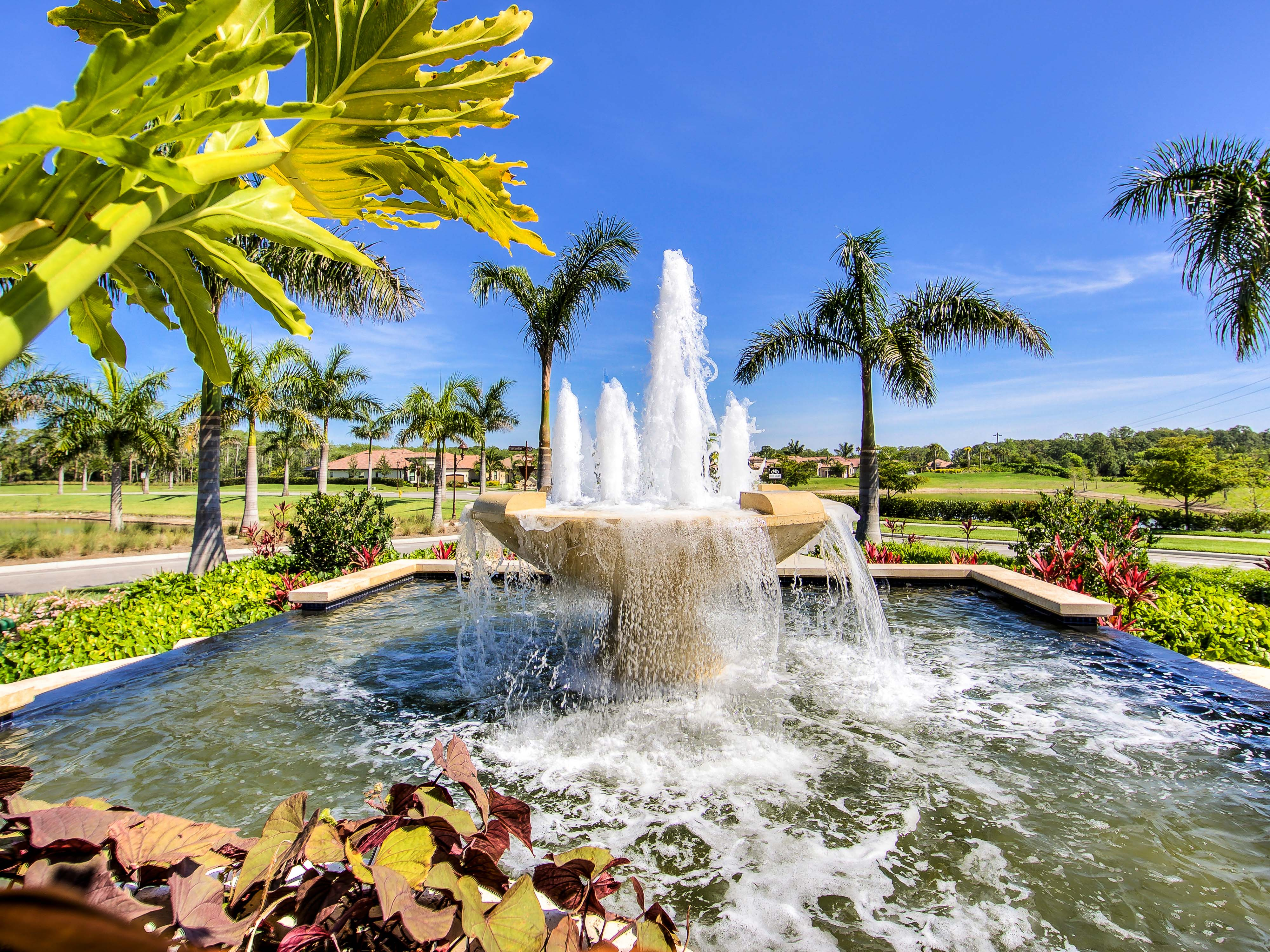 Treviso bay naples florida pinnacle usa inc for Pool design naples fl